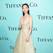 Nini Tiffany & Co. 2017 Blue Book Collection Gala - Red Carpet