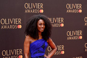 Beverley Knight attends The Olivier Awards with Mastercard at the Royal Albert Hall on April 07, 2019 in London, England.