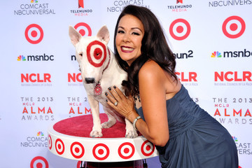 Patricia Rae Target Sponsors The 2013 NCLR ALMA Awards