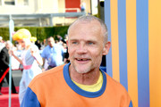 Flea Photos Photo