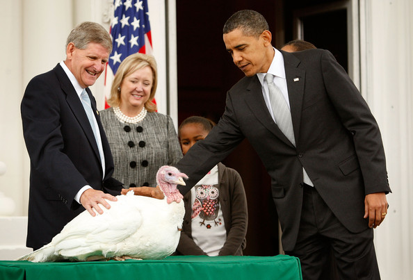 """U.S. President Barack Obama pats a turkey named """"Courage"""" as daughter Sasha (2nd R) looks on during an event to pardon the 20-week-old and 45-pound turkey at the North Portico of the White House November 25, 2009 in Washington, DC. The Presidential pardon of a turkey has been a long time Thanksgiving tradition that dates back to the Harry Truman administration."""