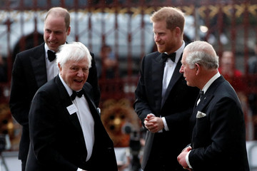 Prince Harry Prince Charles 'Our Planet' Global Premiere - Red Carpet Arrivals