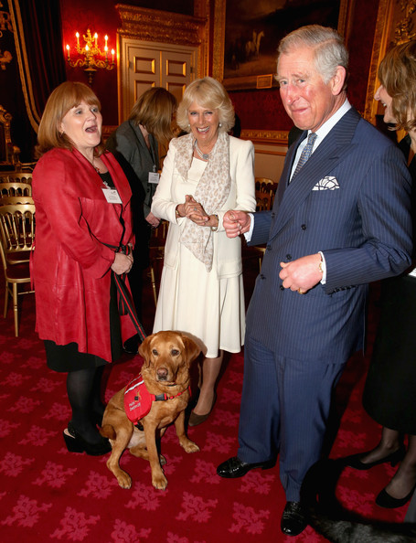 Downtown Abbey actress Lesley Nicol shares holds on to Medical Detection Dog as she laughs with Prince Charles, Prince of Wales and Camilla, Duchess of Cornwall during a demonstration by medical dogs at St James's Palace on March 11, 2014 in London, England.