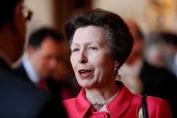 Princess Anne The Queen Hosts A Reception To Mark The 100th Anniversary Of The National Council For Voluntary Organizations