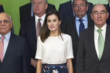 Queen Letizia of Spain Queen Letizia Of Spain Attends A Meeting With FAD Foundation