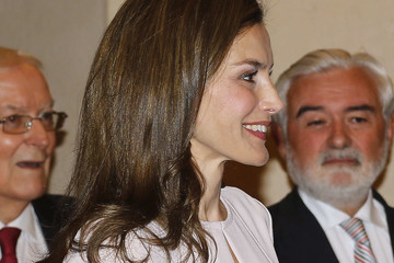 Queen Letizia of Spain Spanish Royals Attend the Presidency of the Plenary of the Spanish Royal Academy