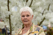Dame Judi Dench attends the RHS Chelsea Flower Show 2019 press day at Chelsea Flower Show on May 20, 2019 in London, England.