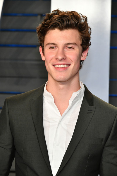 karriere shawn mendes