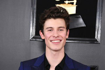Shawn Mendes 61st Annual Grammy Awards - Arrivals