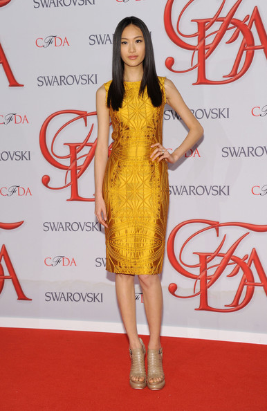 Shu Pei Model Shu Pei attends the 2012 CFDA Fashion Awards at Alice Tully Hall on June 4, 2012 in New York City.