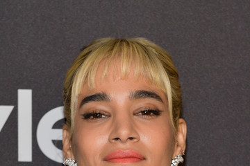 Sofia Boutella The 2019 InStyle And Warner Bros. 76th Annual Golden Globe Awards Post-Party - Red Carpet