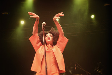 Solange Knowles An Alternative View: 2014 Coachella Valley Music and Arts Festival