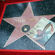 Steve Irwin Steve Irwin Honored Posthumously With Star On The Hollywood Walk Of Fame