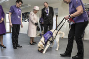"The Queen watches a demonstration by Labradors of the ""Canine Partners"" charity in Midhurst in Sussex on how the dogs are trained to pick up items dropped by their disabled owners. Canine Partners is a registered charity that assists people with physical disabilities to enable them to enjoy greater independence and a better quality of life. Where possible the charity helps people with disabilities into education and employment through the provision of specially trained assistance dogs. As part of this partnership, the well-being of the dogs is also a key consideration. Canine Partner dogs are trained to perform tasks such as opening and closing doors for their wheelchair-using partners, retrieving dropped items, loading and unloading washing machines, helping their partners to undress and getting help in case of emergency. As well as providing practical assistance, the dogs provide companionship, emotional support and increased opportunities for the human partner to interact with members of the public. The Charity currently has nearly 400 dogs partnered with disabled people across the UK, all of whom receive regular aftercare support visits at home. Canine Partners works closely with other charities where it is beneficial to do so, including Guide Dogs, Hearing Dogs, Help for Heroes and The Royal British Legion."
