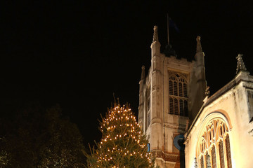 The Very Reverend Dr. John Hall Westminster Abbey Christmas Tree Lights Switched On
