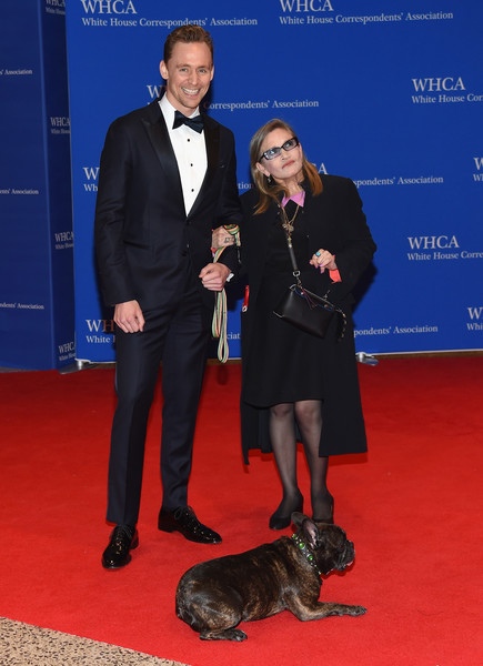 102nd White House Correspondents' Association Dinner - Arrivals [red carpet,carpet,conformation show,event,flooring,suit,canidae,arrivals,carrie fisher,actors,tom hiddleston,gary,dog,washington dc,white house correspondents association dinner,l]