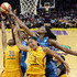Sylvia Fowles Picture