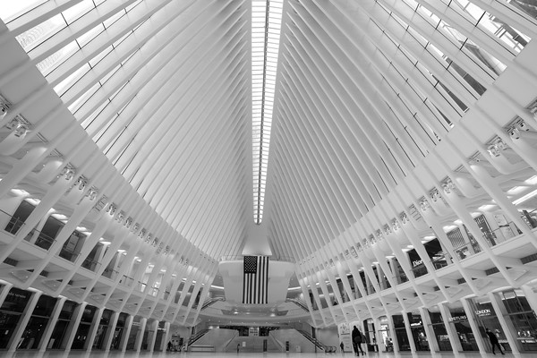 Daily Life In New York City Amid Coronavirus Outbreak [image,white,architecture,monochrome,symmetry,black-and-white,ceiling,line,daylighting,monochrome photography,building,people,life,editors note,line,ceiling,new york city,landmarks,home,coronavirus outbreak,daylighting,symmetry,skyscraper,samsung - cml630d - mounting kit for plasma panel,line,urban area,angle,facade,ceiling]