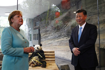 Xi Jinping European Best Pictures of the Day - July 5, 2017