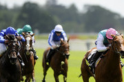 Tom Queally and Midday Photos Photo