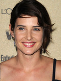 Cobie Smulders Taran Killam engaged