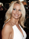 Pamela Anderson Rick Salomon married