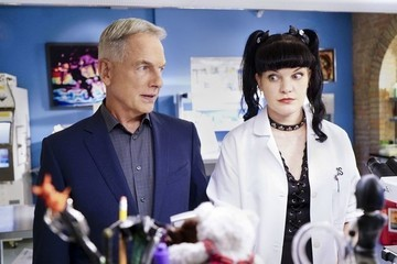 Mark Harmon Allegedly 'Body Checked' Pauley Perrette