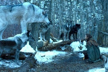 Will Arya Ride Nymeria Into Battle On 'Game Of Thrones'?