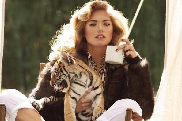 Kate Upton Cuddles With Tiger Cubs, Tweets About It