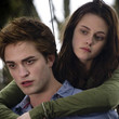 All About 'Twilight'