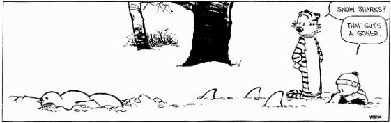 10 Times 'Calvin and Hobbes' Proved Winter is the Most Hilarious Season