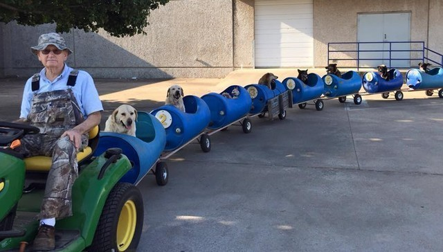 This Man Created a Magnifent 'Dog Train' for Stray Dogs
