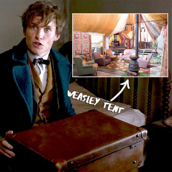 u0027Fantastic Beastsu0027 Connections to Harry Potter  sc 1 st  Zimbio & Bigger on the Inside - u0027Fantastic Beastsu0027 Connections to Harry ...