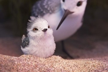 You Will Want to Hug Your Mom After Watching the First Clip for Pixar's 'Piper'