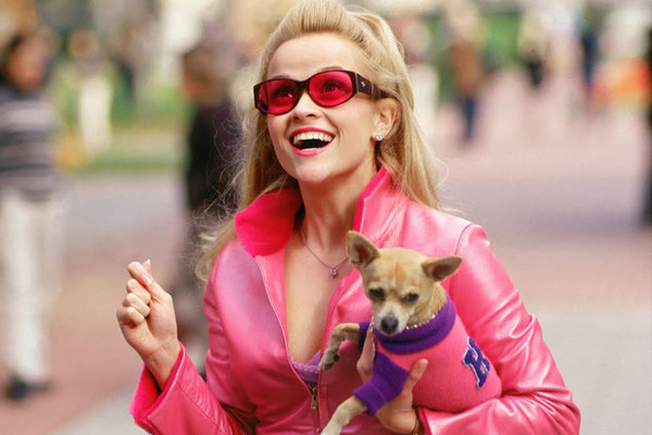 15 Things You Probably Didn't Know About 'Legally Blonde'