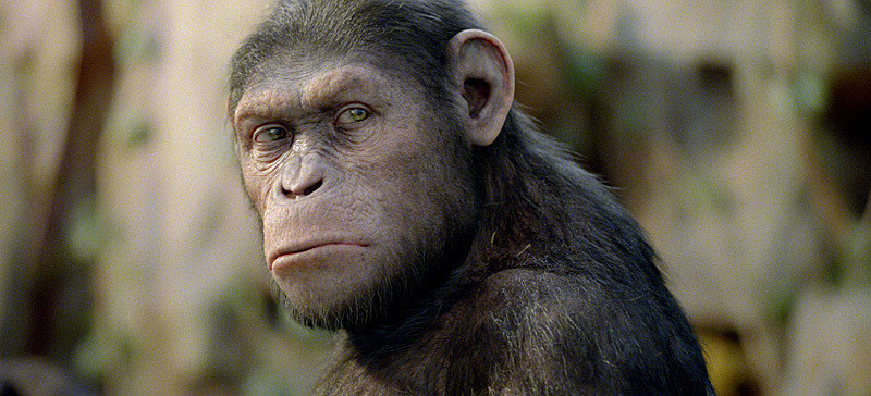 A Brief History of Hollywood's Quest for a Photo-Realistic Ape