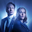 Mulder & Scully ('The X-Files')