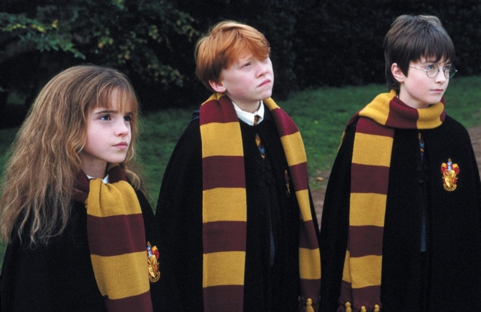 'Harry Potter' Taught Me 'Family' Doesn't Have To Mean Blood