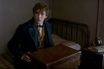 Wait, Newt Scamander Might Be Just a Supporting Player in Upcoming Movies
