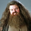 Hagrid in 'Harry Potter'