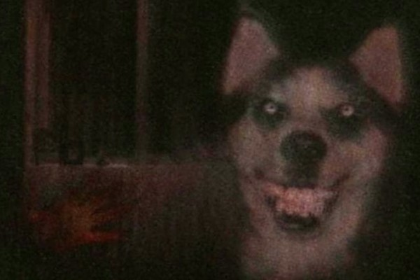 Smile Dog - These Are the 12 Scariest Creepypasta Characters