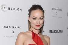Olivia Wilde's Playful Cutout