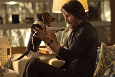 The Best Real Action Movie of 2014 is Called 'John Wick'