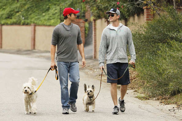 "David Burtka New parents Neil Patrick Harris and David Burtka take their pooches for a stroll. The ""How I Met Your Mother"" star announced via Twitter that he and David had become parents to twins earlier this week. Delivered by a surrogate, the new family arrivals are called Gideon and Harper."