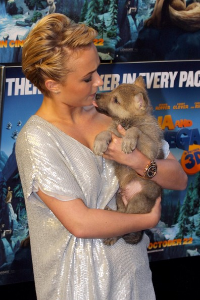 Hayden Panettiere poses with a cub as she arrives for a special screening of the movie