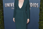 Bryce Dallas Howard Form-Fitting Dress