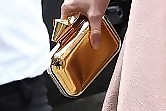 Kate Bosworth Metallic Clutch