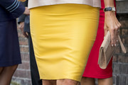 Queen Maxima Pencil Skirt