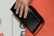 Hayden Panettiere Satin Clutch