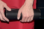 Nia Vardalos Tube Clutch
